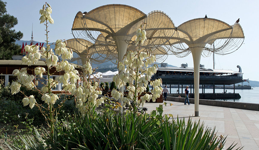 The composition of umbrellas is located on the seaside since the 1960s